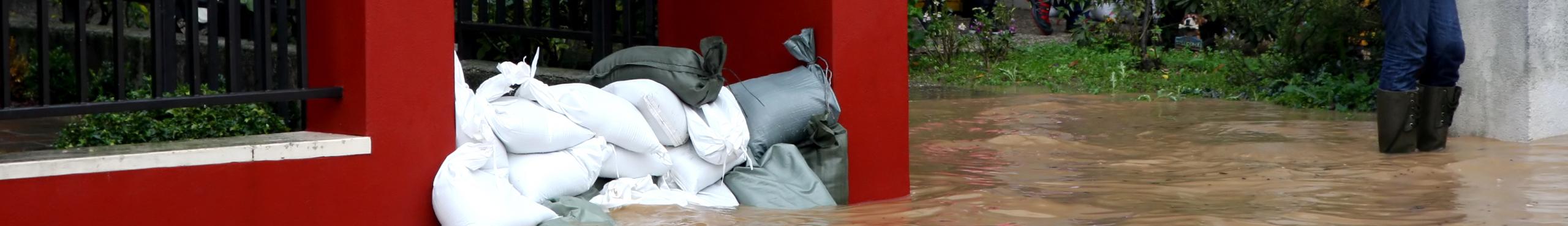 Sandbags of All Types
