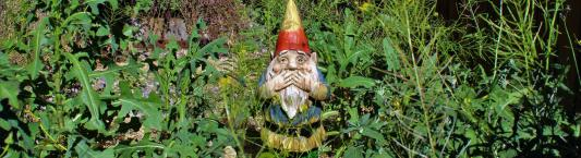 Dwarf in weeds