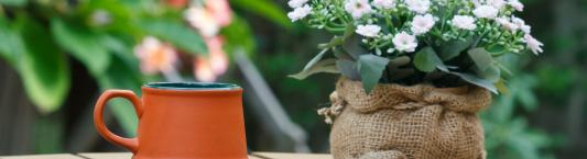 Burlap coffee bags in the garden image