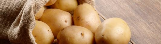 How to use burlap bags to grow potatoes image