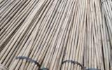 bamboo-stake-inventory