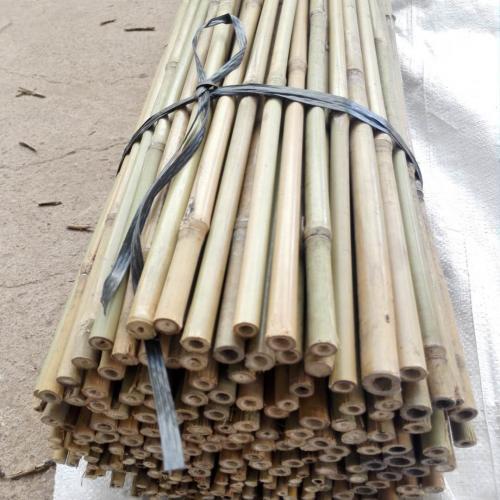 bamboo-stake-bale