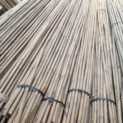 bamboo-stake-inventory