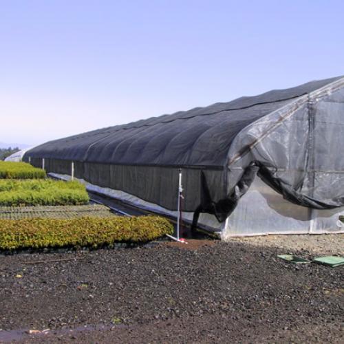Shade Cloth Greenhouse